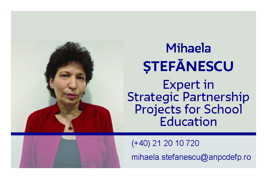 Mihaela Stefanescu